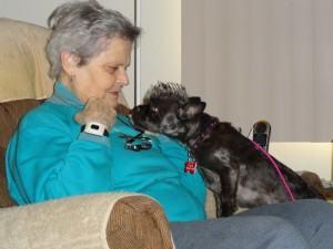 Therapy Dog, Biscotti