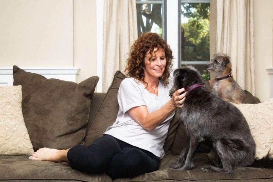The Cost of Pet Sitting in Toms River