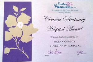 Cleanest Veterinary Hospital in the Toms River Area