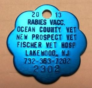 Protect Myself and My Pets from Rabies