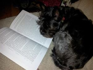 7 Books Every Pet Owner Should Read